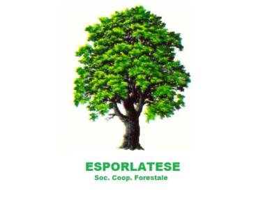 Esporlatese
