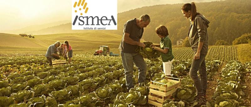Agevolazioni per l'insediamento di giovani in agricoltura