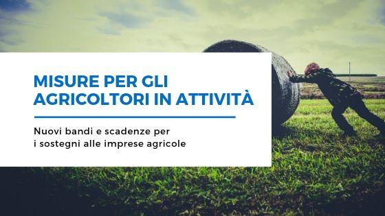 Nuove misure per gli agricoltori in attività: bandi e indennità della Regione Sardegna